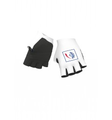 GROUPAMA FDJ Chrono summer gloves 2020