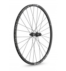 DT SWISS X 1900 SPLINE BOOST back wheel